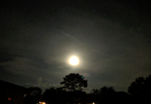 Harvest moon in Ocala
